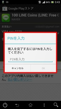 google_play_pin019